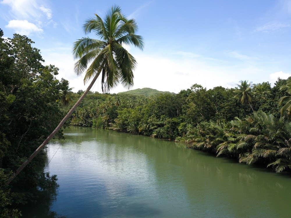 rio de Bohol Loboc