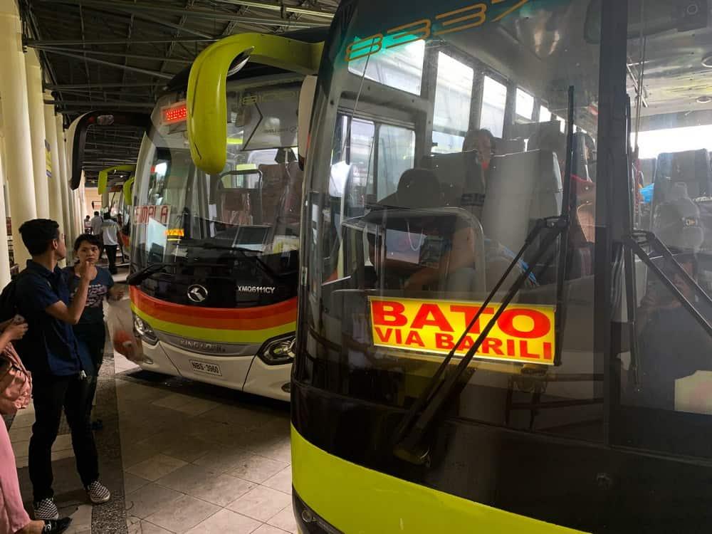 buses que van a Moalboal