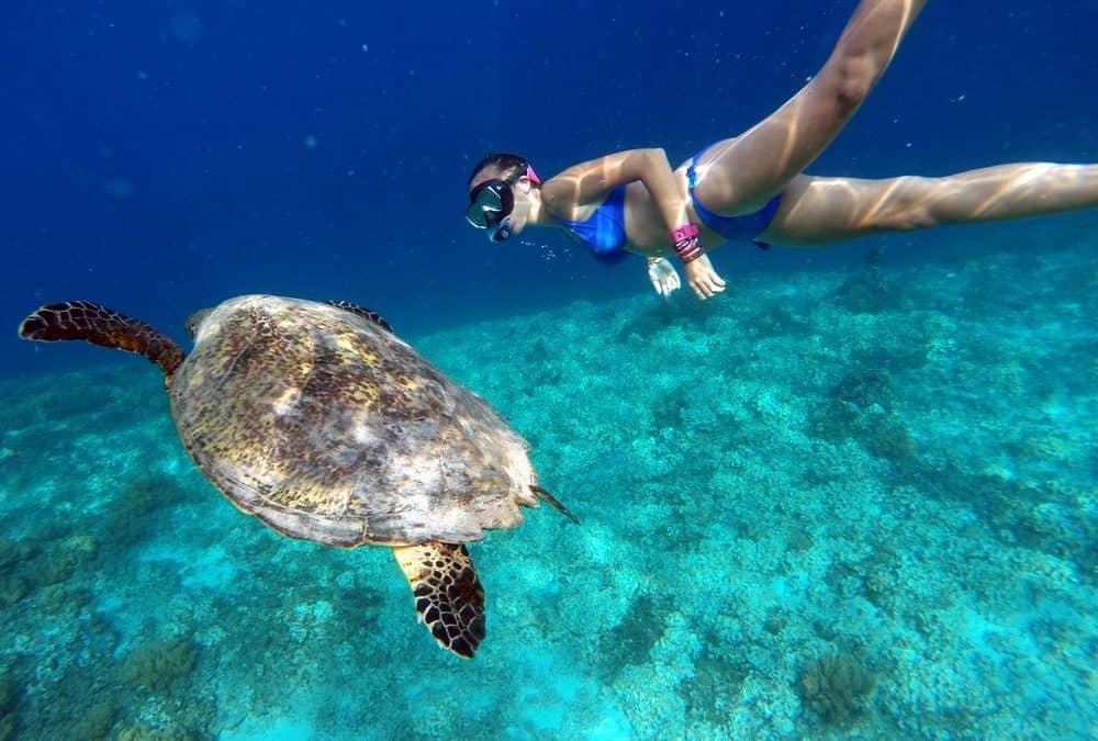 Los mejores sitios para hacer snorkel en Filipinas