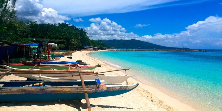 snorkel en Cebu con sardinas