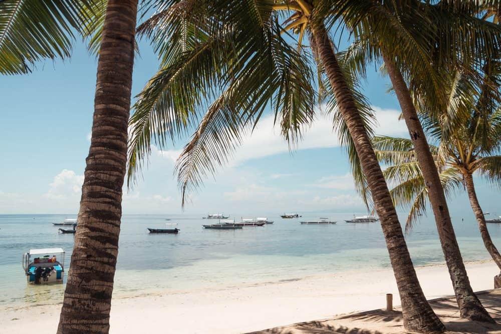 playa frente centro de buceo panglao