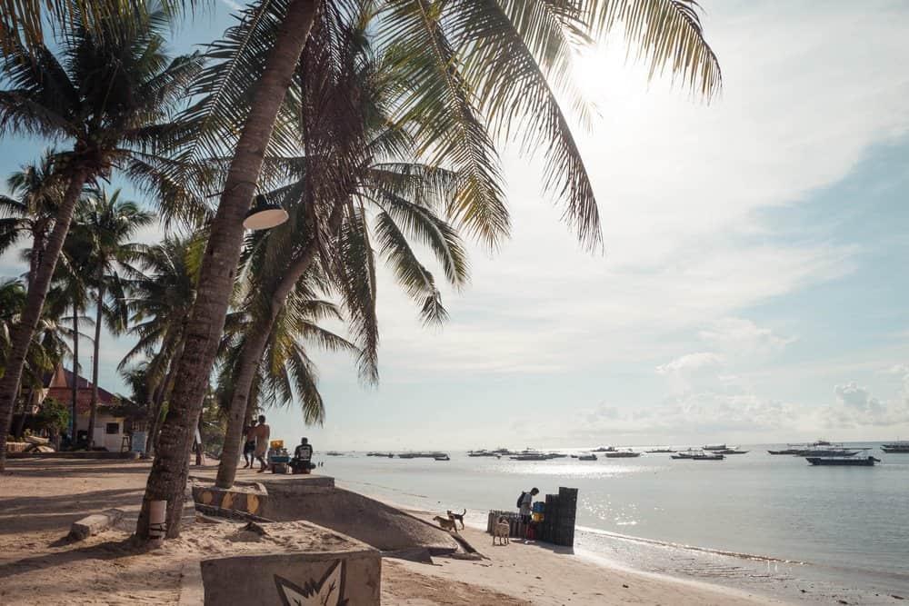 playa de alona panglao buceo