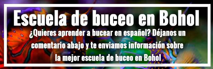 escuela buceo bohol en español