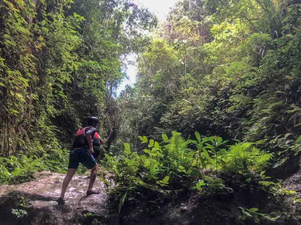 camino a la siguiente cascada