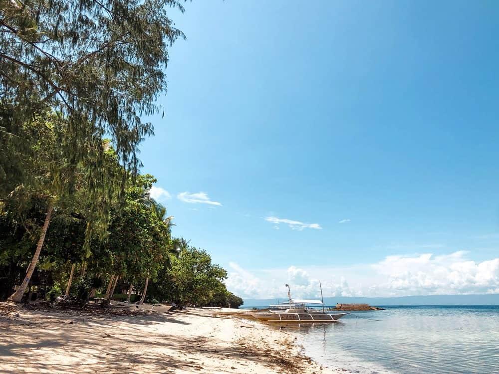 momo beach en panglao