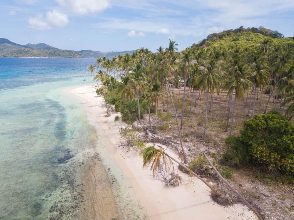 Ginto Island y sus palmeras de postal