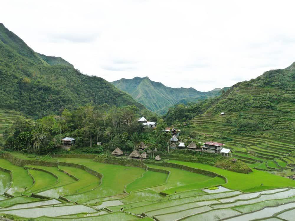 senderismo terrazas de arroz de Batad