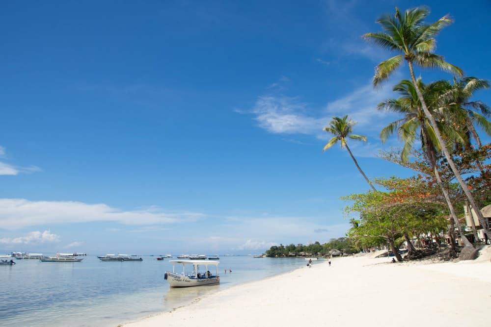 alona beach panglao snorkel en balicasag