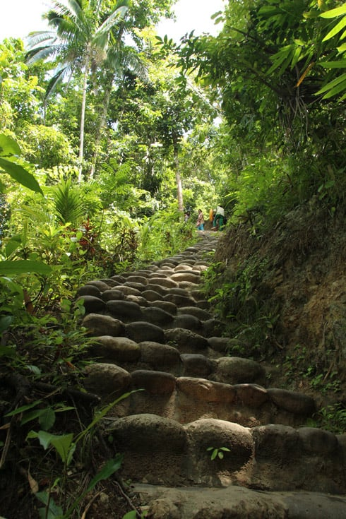 Escalaras hacia las cascadas
