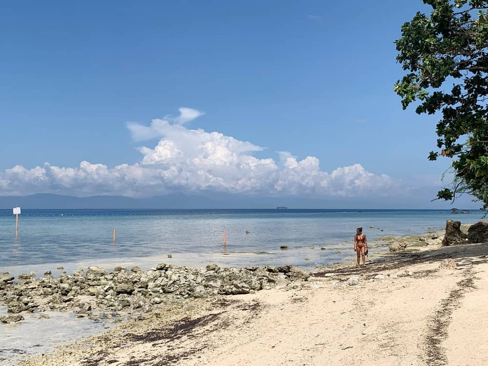 snorkel lambug beach moalboal