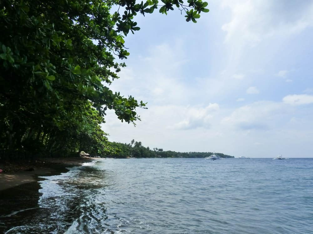 playas de dauin negros