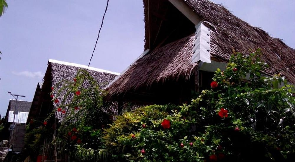 Pacifico 501 Backpackers & Budget Accommodation