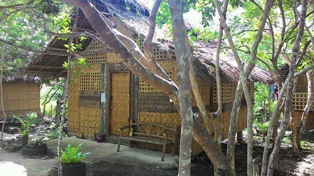 hostel en Panglao Coco Farm